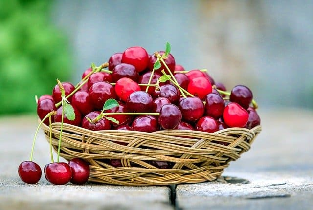 cherries for gout